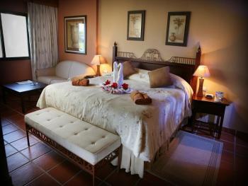 Occidental Punta Cana Dominican Republic - Royal Club Jr. Suite